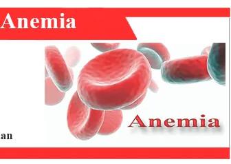 Penyebab-Anemia-Pengertian-Proses-Efek-dan-Pencegahan